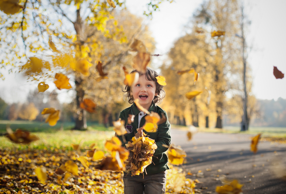 8 fall activities for the whole family