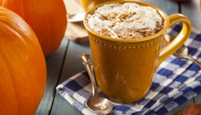 Pumpkin Spice Everything: A Fall Recipe Roundup