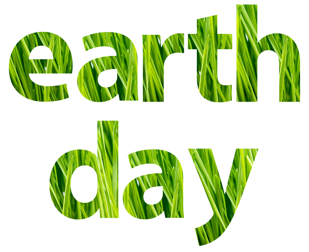 Earth Day 2015: 25 Ways to Go Green | Loren's World