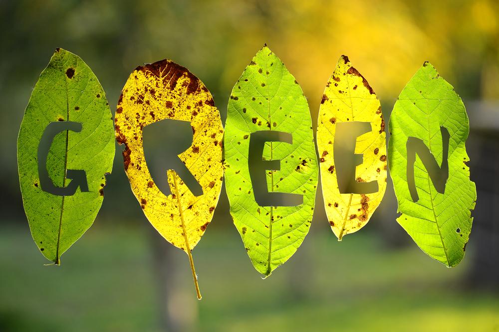 Go Green Ideas Part - 26:  Go Green Ideas