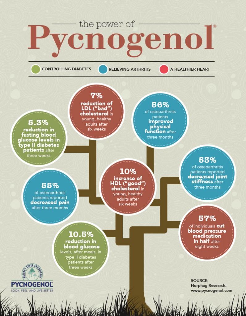 Pycnogenol-Infographc