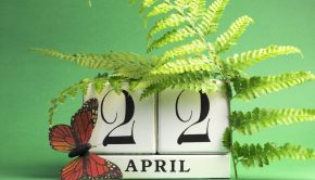 April 22 is Earth Day: How to Celebrate | Loren's World