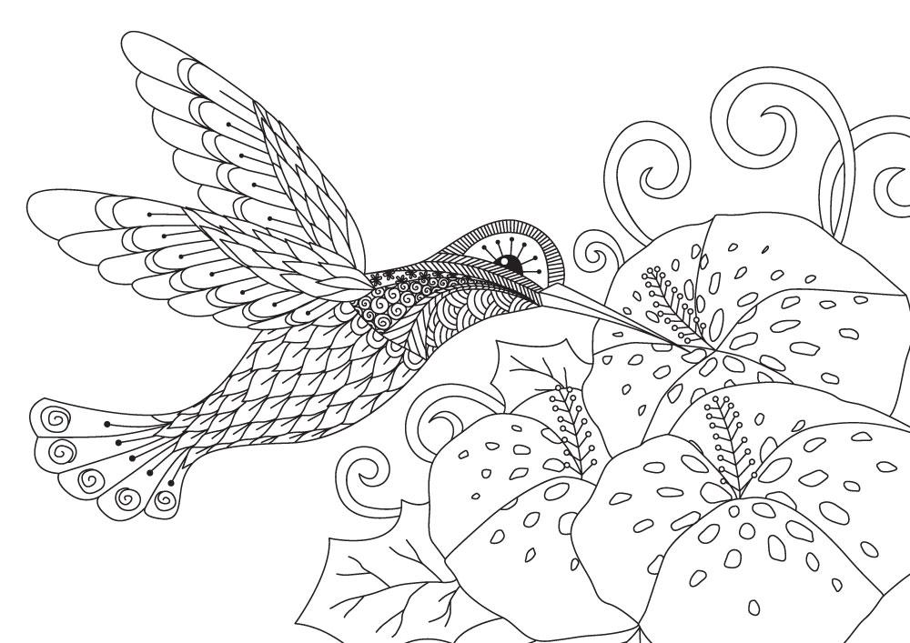 Bird Mandala To Color From Nature Mandalas