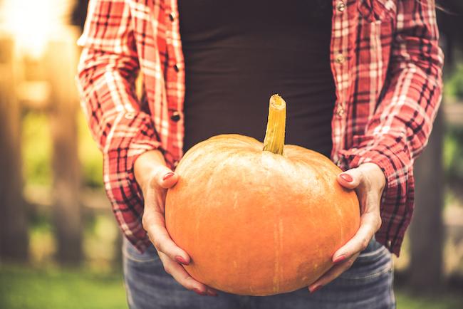 garden, diy, fall, summer fall, fall diy, home, garden