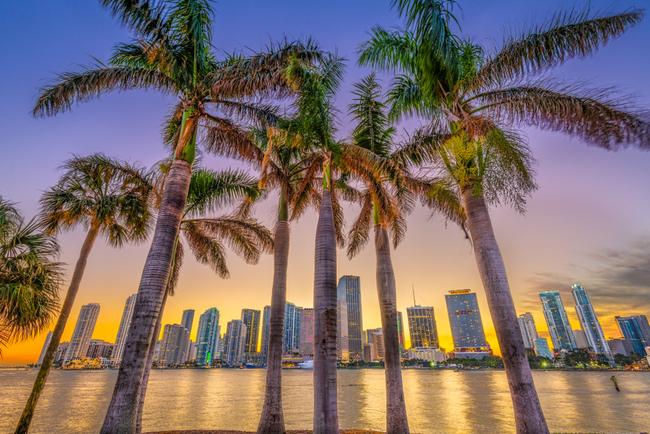 Miami entrepreneurs